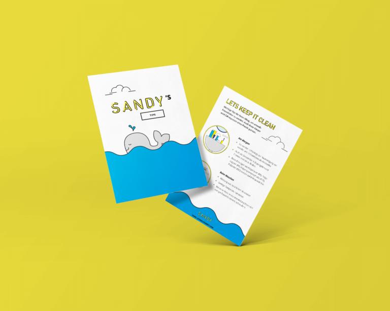 Sandy / Flyer